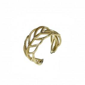 טבעת ונוס- גולדפילד