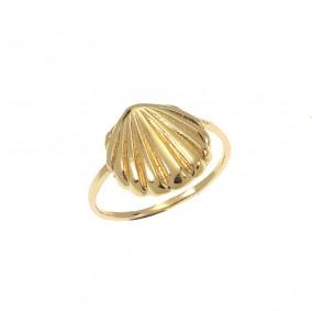 טבעת צדף-גולדפילד