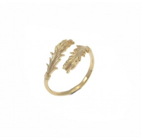 טבעת אריס
